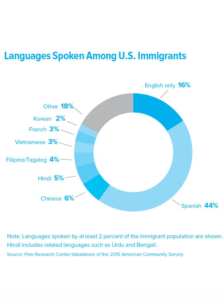 How to Bridge the Language Gap