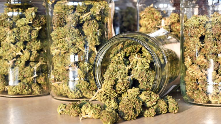 The ABCs of THC: What Employers Need to Know About Marijuana