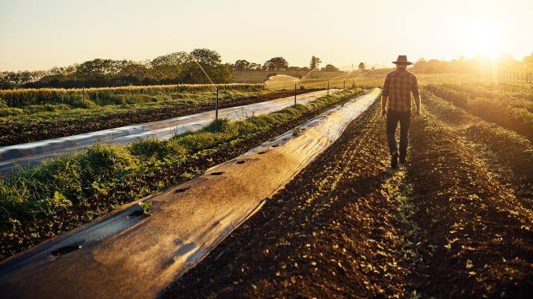 House Approves Overhaul of Migrant Farmworker Laws
