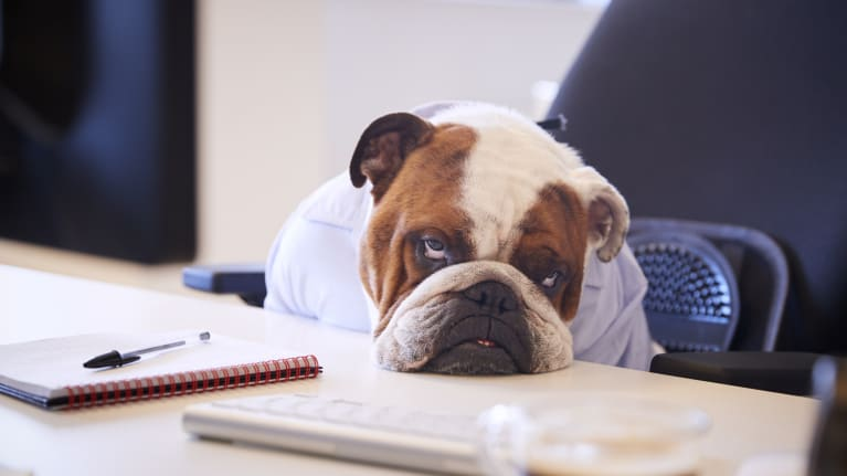 Why Managers Design Jobs to Be More Boring Than They Need to Be