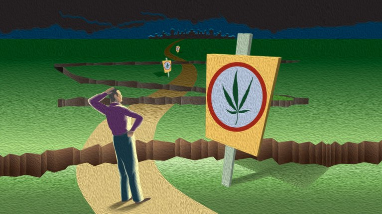 Marijuana Laws: Navigating the Shifting Landscape