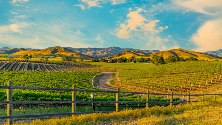 5 Tips for California Agricultural Employers