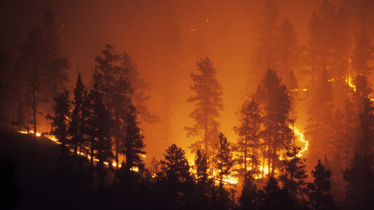 California Employers Must Comply with Leave Laws During Wildfires