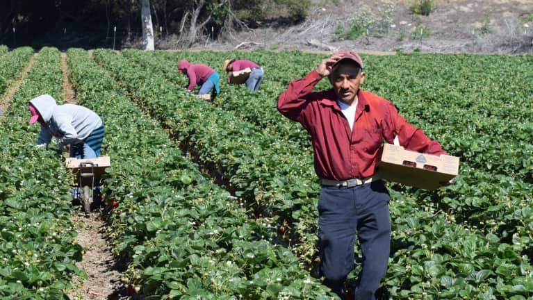 Farmworker Overtime Bill Awaits California Governor's Approval