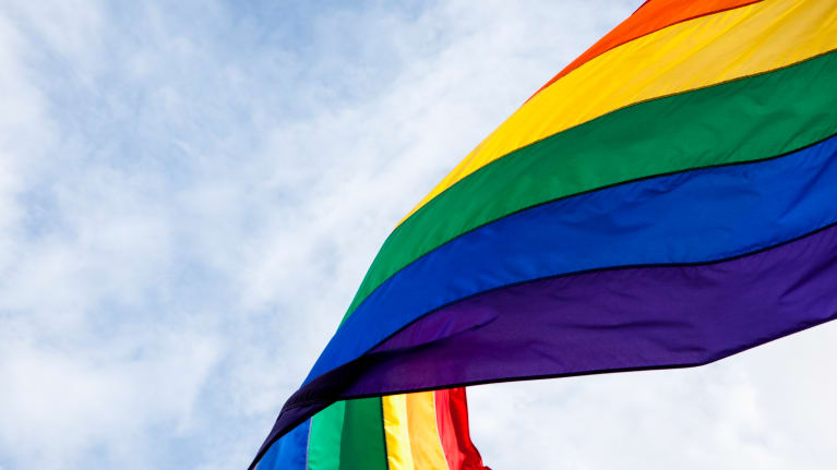 Gender Stereotype Protections Apply to Lesbian, Gay and Bisexual Employees