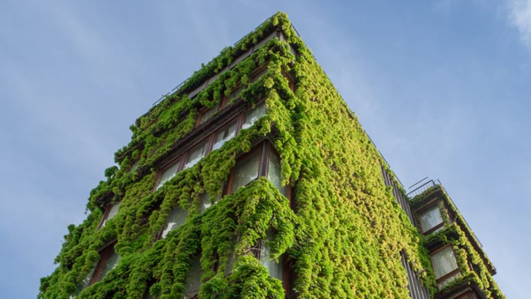 'Green' Buildings May Boost Productivity, Cut Down on Sick Days