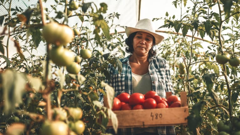 Bipartisan Bill Proposes Legalizing Foreign Farmworkers, Requiring E-Verify