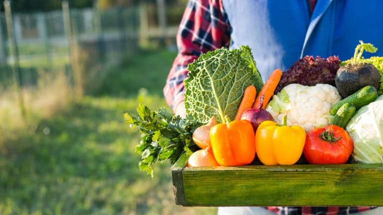 Farm-to-Worksite Programs Promote Healthier Eating
