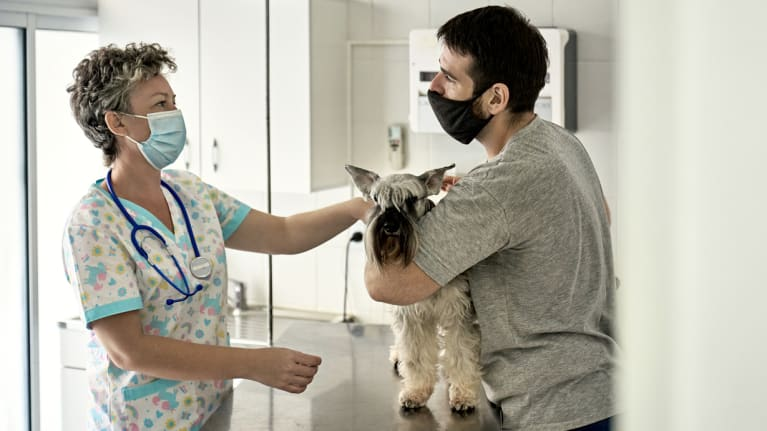 Pet Boom Puts Pressure on Vet Staff, Owners During Pandemic