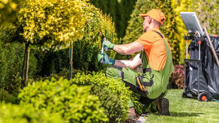 worker performing landscaping