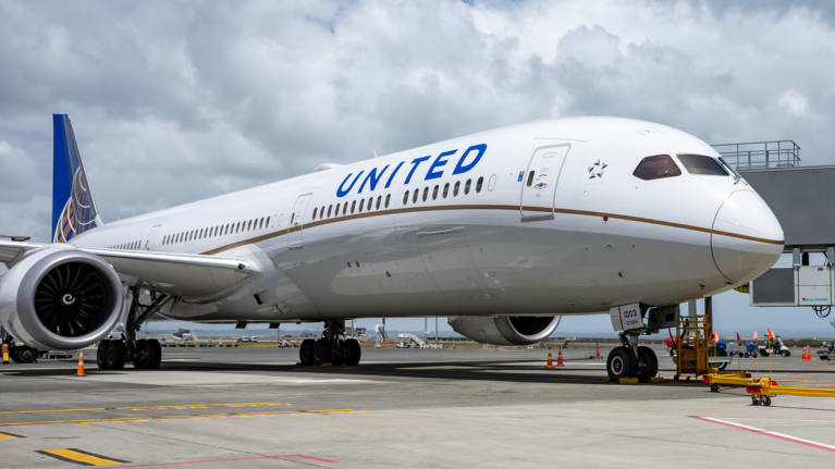 a United Airlines plane at an airport gate