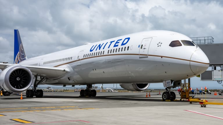 A United Airlines airplane  at an airport gate