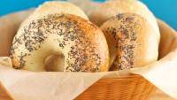 Eating Poppy-Seed Bagels and Other Excuses for Failing Workplace Drug Tests