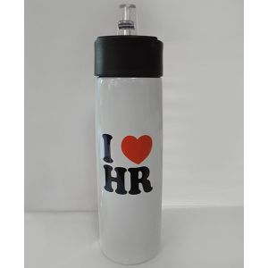 Stainless Steel Water Bottle with I Love HR Logo