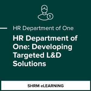 HR Department of One: Developing Targeted L&D Solutions