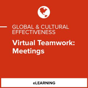 Virtual Teamwork: Meetings