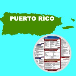 Puerto Rico and Federal Labor Law Poster Set with 1-Year Update Service -- Spanish Version