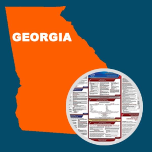 Georgia And Federal Labor Law Poster Set With 1-Year